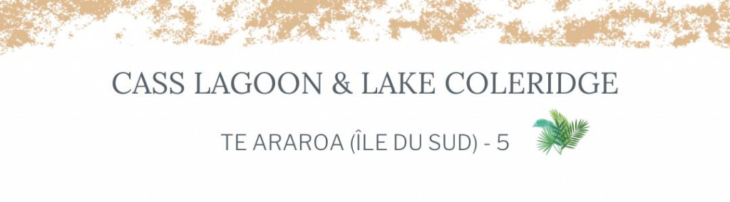 section 5 - header - lake coleridge